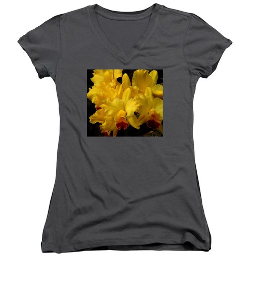 Yellow Folds Women's V-Neck