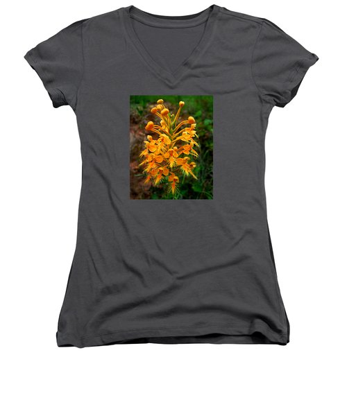 Women's V-Neck T-Shirt (Junior Cut) featuring the photograph Wild Yellow Fringed Orchid by William Tanneberger