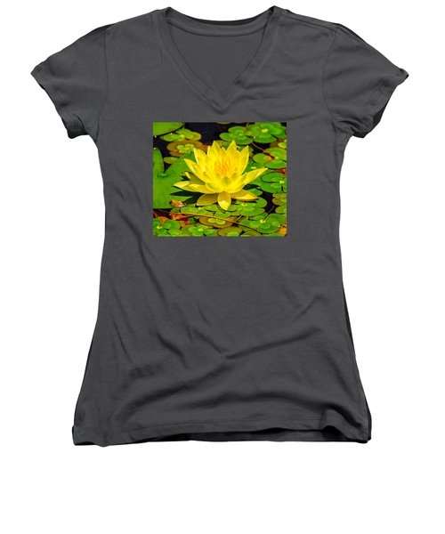 Yellow Lily Women's V-Neck
