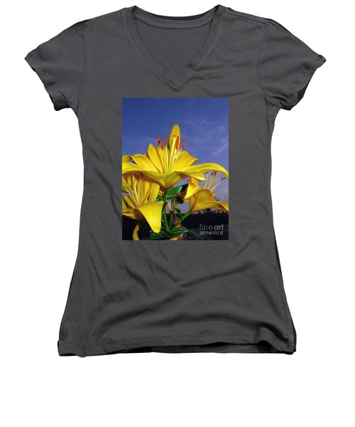 Yellow Spring  Women's V-Neck (Athletic Fit)