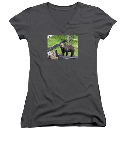 Yellowstone Grizzlies 2 Women's V-Neck T-Shirt (Junior Cut) by George Jones