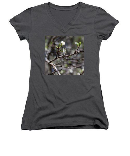 Young Plums Women's V-Neck