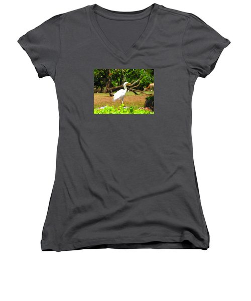 Zoo Women's V-Neck (Athletic Fit)