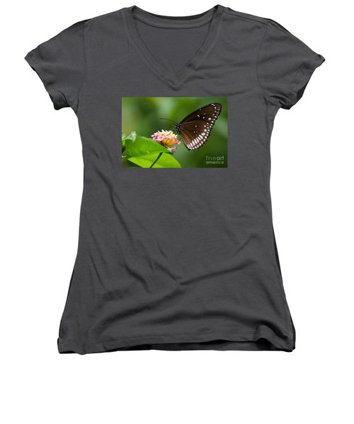 Women's V-Neck T-Shirt (Junior Cut) featuring the photograph Butterfly by Fotosas Photography