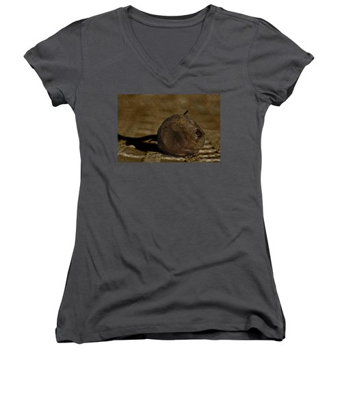 Women's V-Neck T-Shirt (Junior Cut) featuring the photograph Dead Rosebud by Steve Purnell