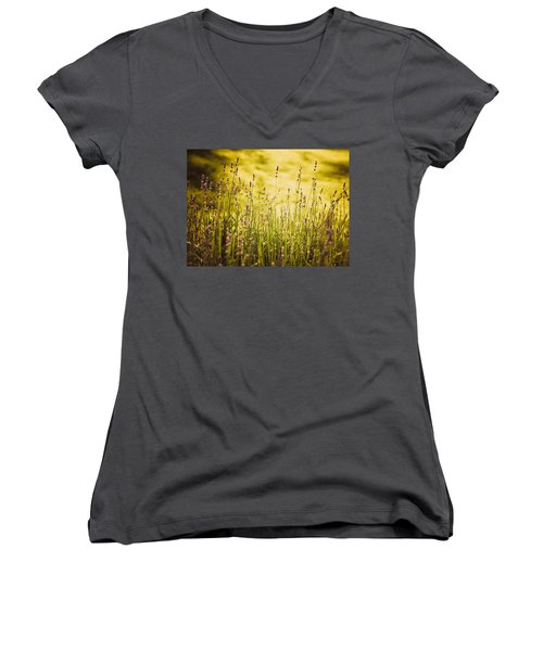 Lavender Gold Women's V-Neck T-Shirt (Junior Cut) by Sara Frank