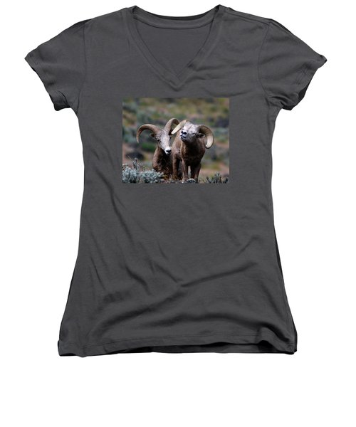Women's V-Neck T-Shirt (Junior Cut) featuring the photograph Smile by Steve McKinzie