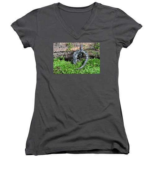 Slimy Salamander Women's V-Neck T-Shirt (Junior Cut) by Ted Kinsman