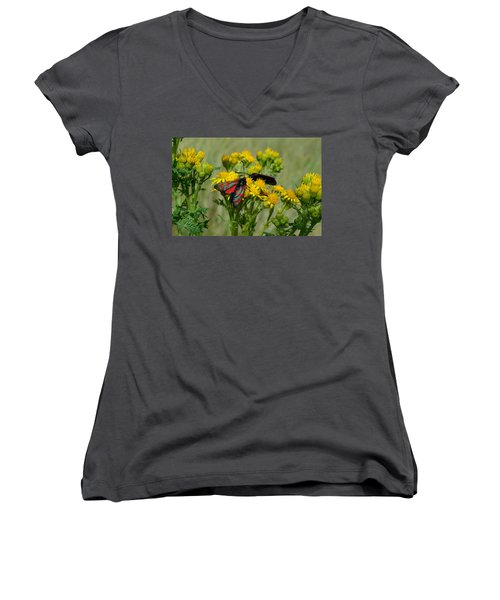 Women's V-Neck T-Shirt (Junior Cut) featuring the photograph 6 Spot Burnet by Barbara Walsh
