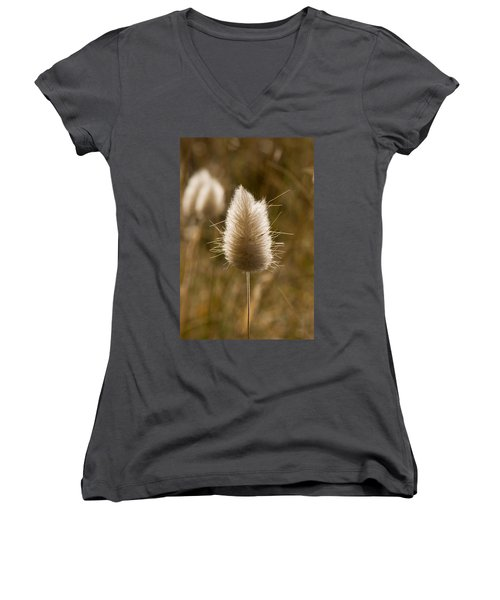 A Beautiful Seed Pod With Beautiful Sun Reflection Women's V-Neck (Athletic Fit)