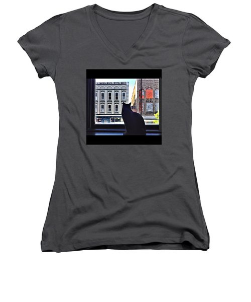 A Cat's View Women's V-Neck (Athletic Fit)