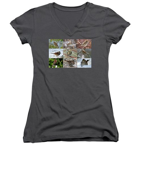 A Study In Sparrows Women's V-Neck (Athletic Fit)