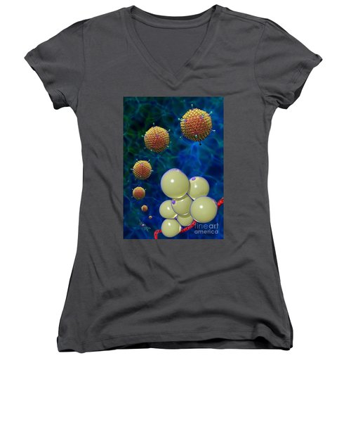 Adenovirus 36 And Fat Cells Women's V-Neck