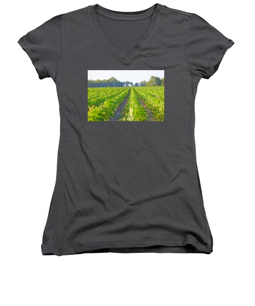 Agriculture- Corn 1 Women's V-Neck T-Shirt