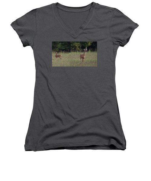 Alert Doe And Fawn Women's V-Neck