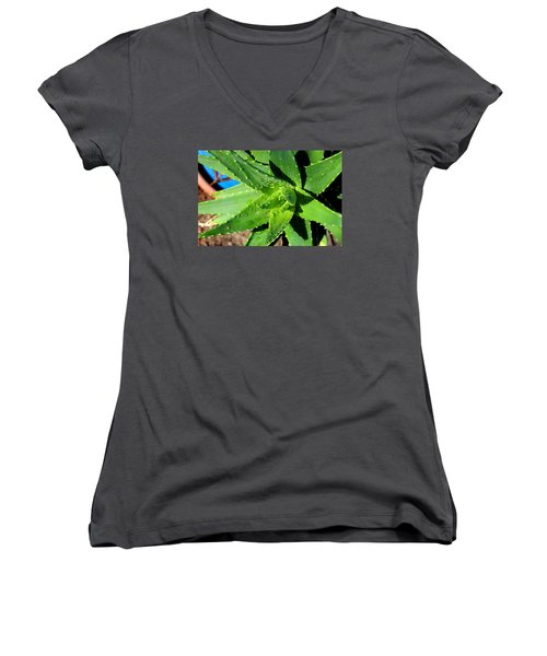 Aloe Women's V-Neck T-Shirt (Junior Cut) by M Diane Bonaparte