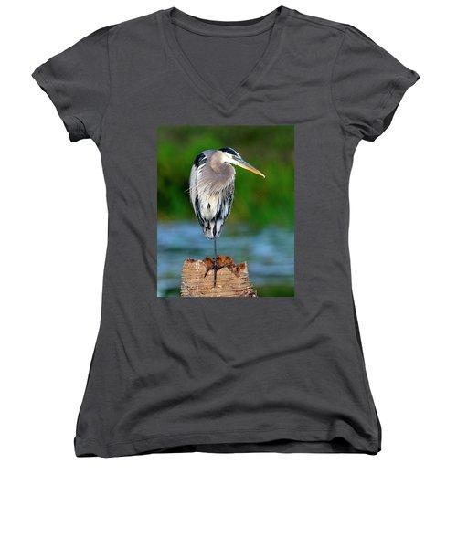 Angry Bird Women's V-Neck