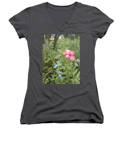 Antique Rose Women's V-Neck T-Shirt