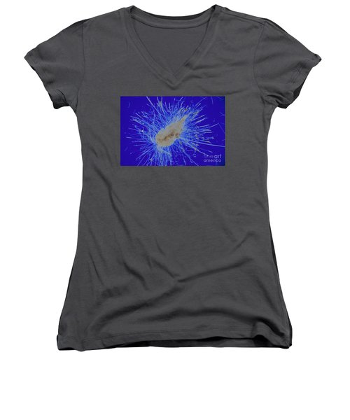 Aquatic Phycomycete Women's V-Neck T-Shirt (Junior Cut) by M. I. Walker