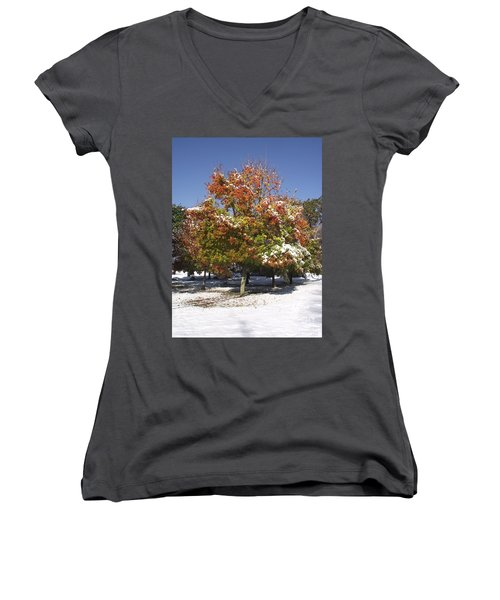 Autumn Snow Women's V-Neck (Athletic Fit)