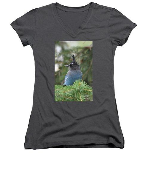 Bad Hair Day Women's V-Neck T-Shirt