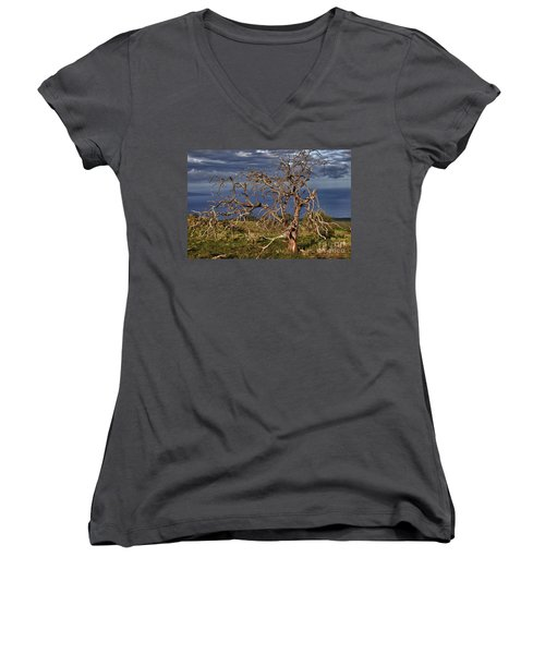 Bare Tree In Hana Maui Women's V-Neck T-Shirt
