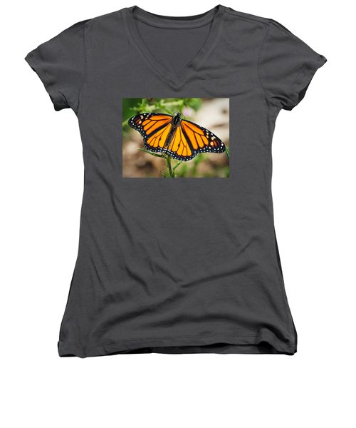 Women's V-Neck T-Shirt (Junior Cut) featuring the photograph Beautiful Boy by Cheryl Baxter