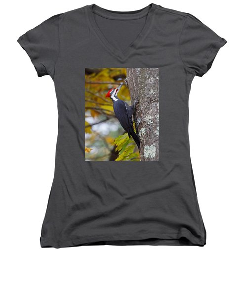 Beautiful Pileated Woodpecker Women's V-Neck (Athletic Fit)