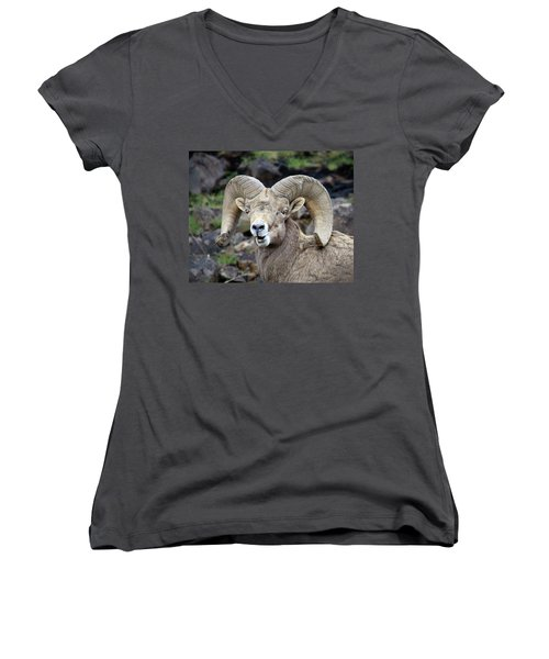 Bighorn Giant Women's V-Neck T-Shirt (Junior Cut) by Steve McKinzie