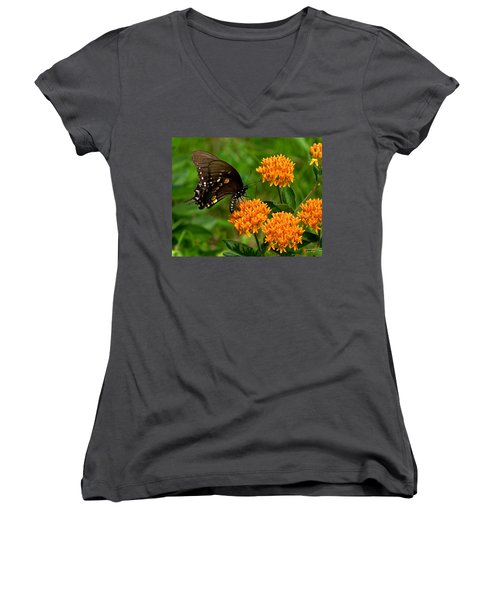 Black Swallowtail Visiting Butterfly Weed Din012 Women's V-Neck T-Shirt