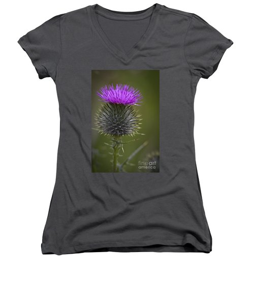 Blooming Thistle Women's V-Neck T-Shirt (Junior Cut) by Clare Bambers
