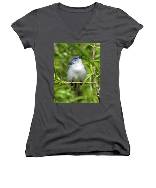 Blue-gray Gnatcatcher Dsb147 Women's V-Neck T-Shirt (Junior Cut) by Gerry Gantt