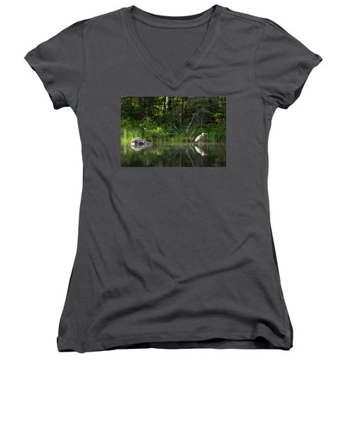 Blue Heron Long Pond Wmnf Women's V-Neck (Athletic Fit)