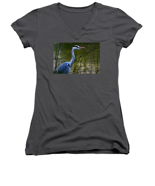 Blue Heron Vondelpark Amsterdam Women's V-Neck (Athletic Fit)