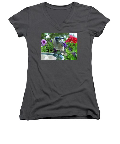 Women's V-Neck T-Shirt (Junior Cut) featuring the photograph Blue Jay At Water by Debbie Portwood