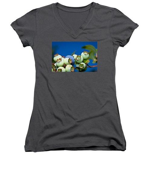 Blueberries And Sky Women's V-Neck