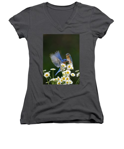 Women's V-Neck T-Shirt (Junior Cut) featuring the photograph Bluebirds Picnicking In The Daisies by Randall Branham