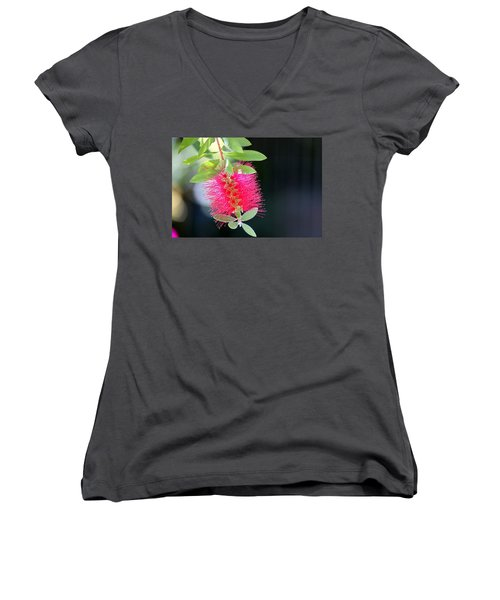 Bottlebrush Nectar Women's V-Neck T-Shirt