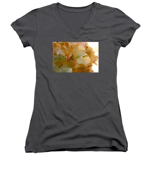 Bougainvillea Memory Women's V-Neck T-Shirt