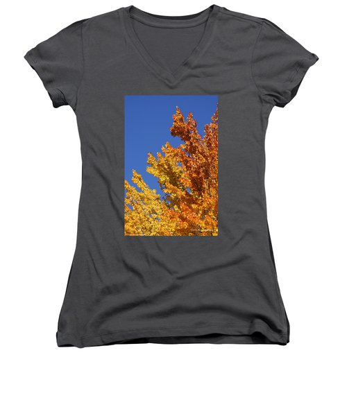 Brilliant Fall Color And Deep Blue Sky Women's V-Neck T-Shirt (Junior Cut) by Mick Anderson