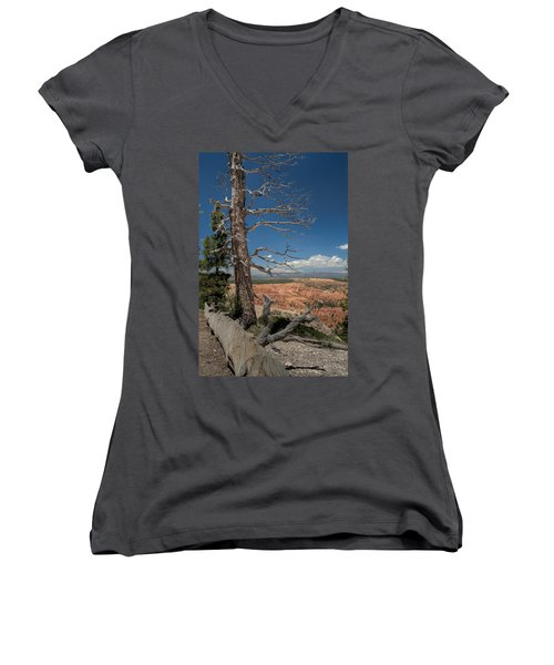Bryce Canyon - Dead Tree Women's V-Neck T-Shirt (Junior Cut) by Larry Carr