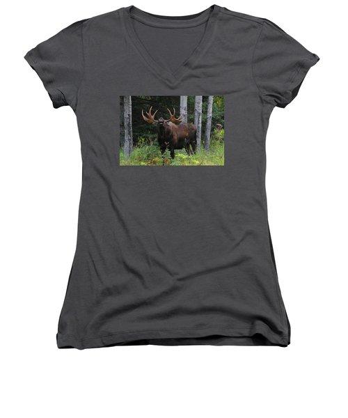 Bull Moose Flehmen Women's V-Neck