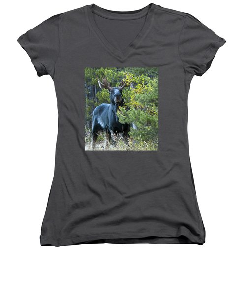 Bull Moose Women's V-Neck (Athletic Fit)