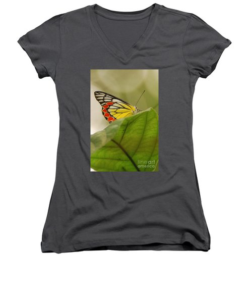 Women's V-Neck T-Shirt (Junior Cut) featuring the photograph Butterfly Resting by Fotosas Photography