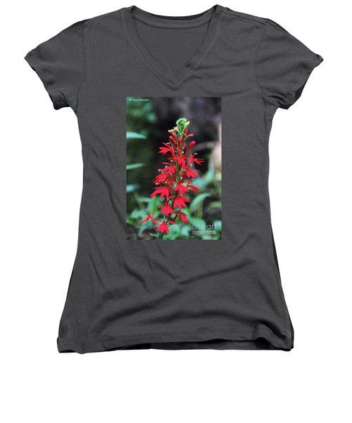 Cardinal Flower Women's V-Neck