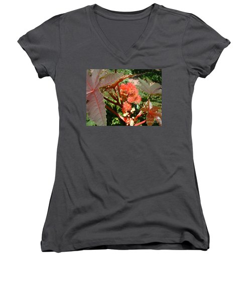 Castor Women's V-Neck T-Shirt