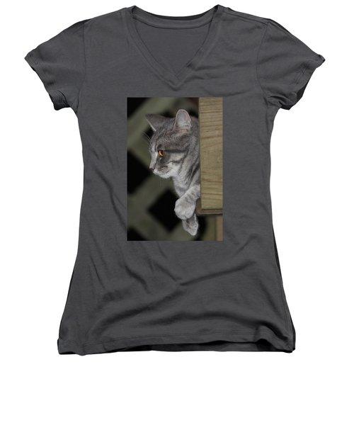 Cat On Steps Women's V-Neck