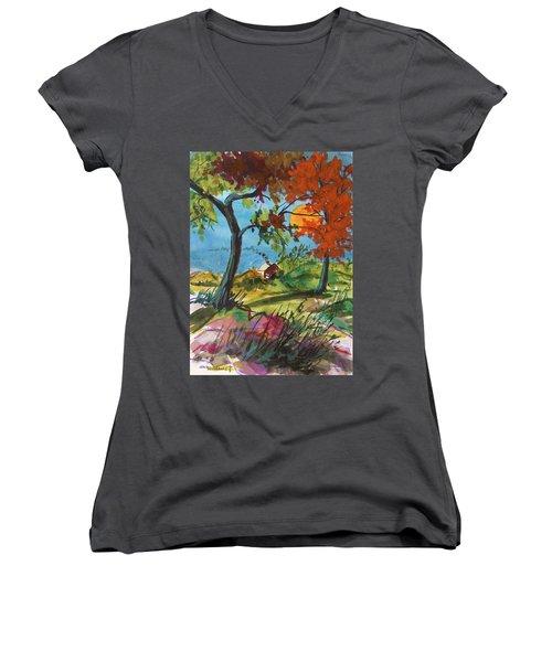 Catching Sundown Women's V-Neck T-Shirt (Junior Cut) by John Williams