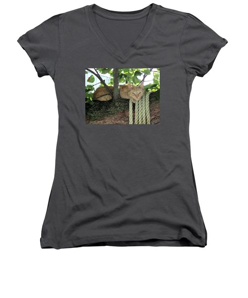 Women's V-Neck T-Shirt (Junior Cut) featuring the photograph Catnap Time by Thomas Woolworth