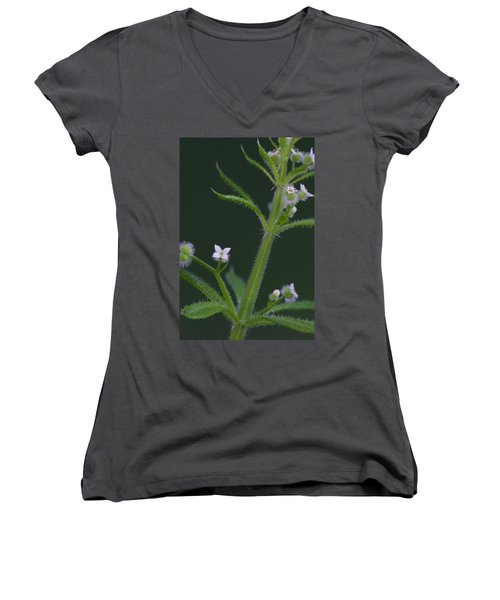 Cleavers Women's V-Neck T-Shirt (Junior Cut) by Daniel Reed